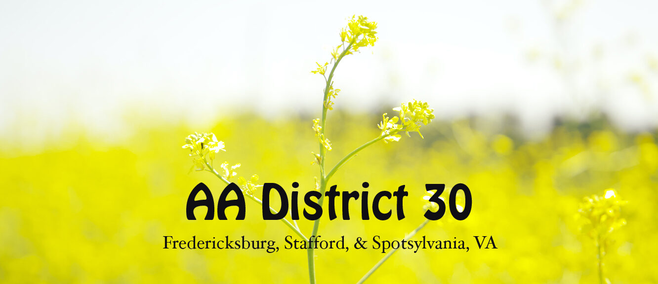 AA District 30 Virginia